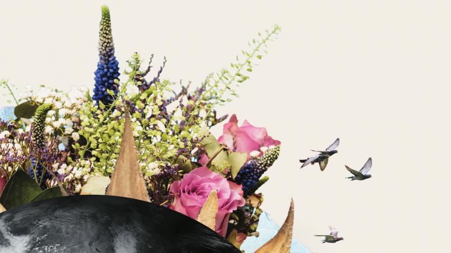 20/21 Denboraldiaren irudiaren zati bat
